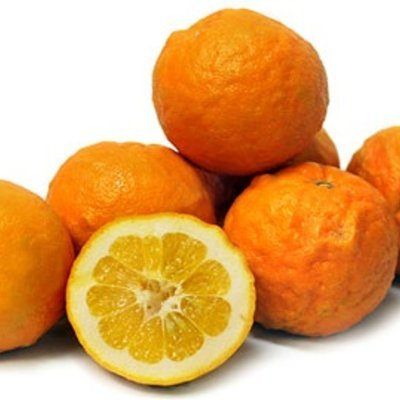 Orange Seville