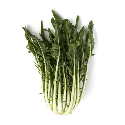 Puntarelle (italy)